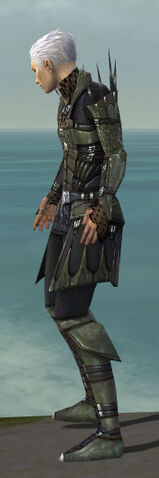 File:Necromancer Cabal Armor M gray side.jpg