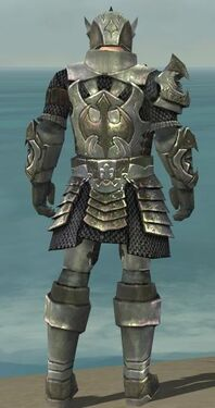 Warrior Elite Templar Armor M gray back