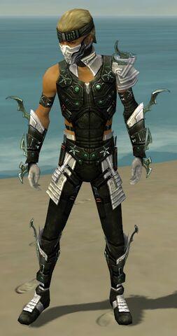 File:Assassin Elite Luxon Armor M dyed front.jpg