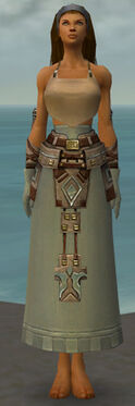 Dervish Istani Armor F gray arms legs front