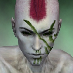 File:Necromancer Asuran Armor M dyed head front.jpg
