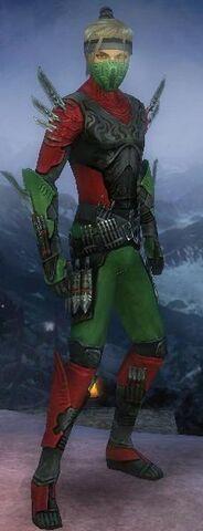 File:The Turtle Ninja.jpg