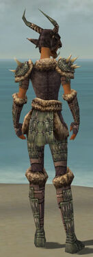 Warrior Charr Hide Armor F gray back