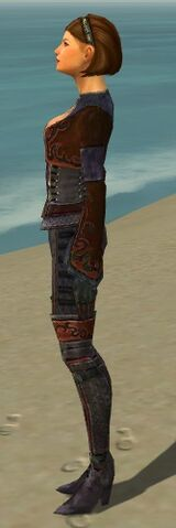 File:Mesmer Elite Rogue Armor F dyed side.jpg
