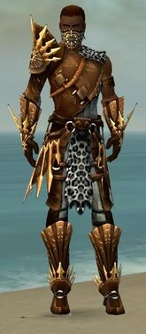 Ranger Elite Sunspear Armor M dyed front