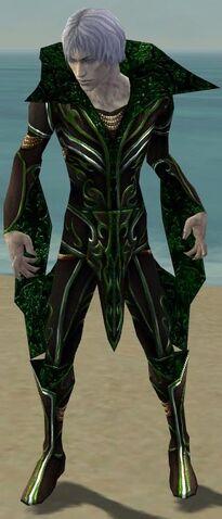 File:Necromancer Vabbian Armor M dyed front.jpg