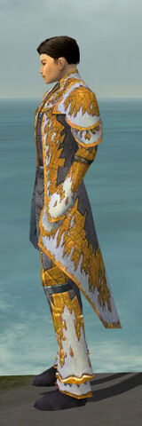 File:Elementalist Iceforged Armor M dyed side.jpg
