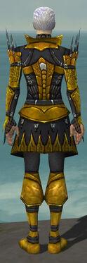 Necromancer Cabal Armor M dyed back