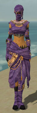 Ritualist Ancient Armor F dyed front