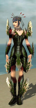 Necromancer Primeval Armor F dyed front