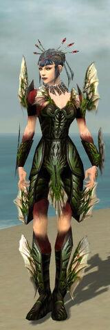 File:Necromancer Primeval Armor F dyed front.jpg