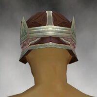 Crown M gray back