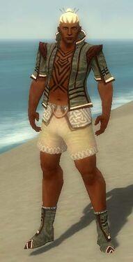Monk Kurzick Armor M gray chest feet front