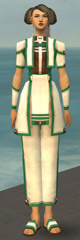 File:Monk Sacred Armor F dyed front.jpg