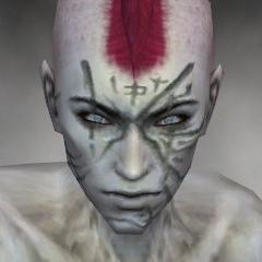 File:Necromancer Shing Jea Armor M gray head front.jpg