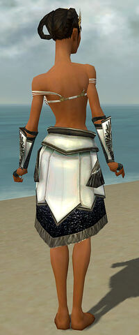 File:Paragon Obsidian Armor F gray arms legs back.jpg