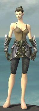 Warrior Templar Armor F gray arms legs front