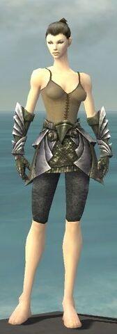 File:Warrior Templar Armor F gray arms legs front.jpg
