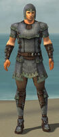 Warrior Tyrian Armor M gray front