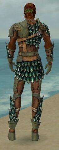 File:Ranger Drakescale Armor M gray back.jpg