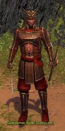 GuardsmanAyoki