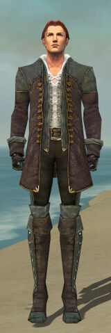 File:Mesmer Tyrian Armor M gray front.jpg
