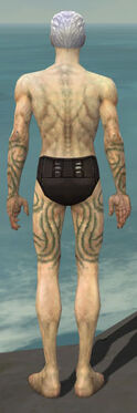 Necromancer Scar Pattern Armor M gray arms legs back