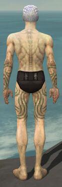 Necromancer Scar Pattern Armor M gray arms legs back