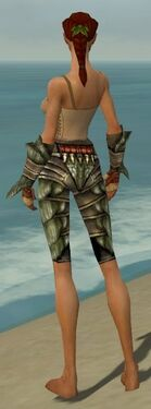 Ranger Elite Drakescale Armor F gray arms legs back