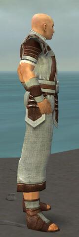 File:Monk Censor Armor M gray side.jpg
