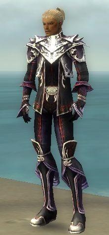 File:Elementalist Deldrimor Armor M dyed front.jpg