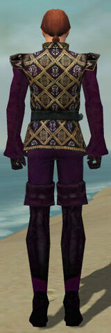 File:Mesmer Courtly Armor M dyed back.jpg