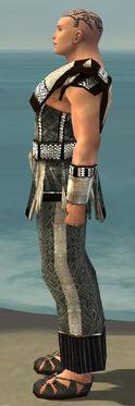 Monk Elite Sunspear Armor M gray side