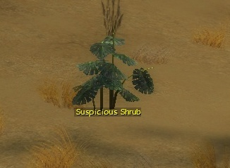 File:Suspicious shrub.jpg