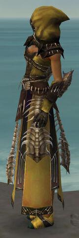 File:Dervish Primeval Armor F dyed side.jpg