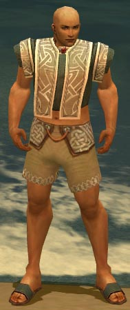 File:Monk Tyrian Armor M gray chest feet front.jpg