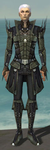 File:Necromancer Cabal Armor M gray front.jpg