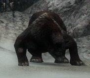 File:Rabid Bear.jpg
