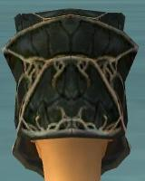 File:Warrior Elite Luxon Armor F gray head back.jpg