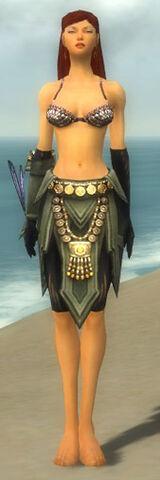 File:Ritualist Elite Kurzick Armor F gray arms legs front.jpg