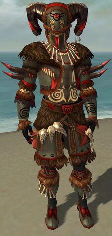 File:Ritualist Norn Armor M gray front.jpg
