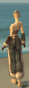 Monk Norn Armor F gray arms legs back