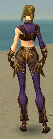 File:Ranger Sunspear Armor F dyed back.jpg