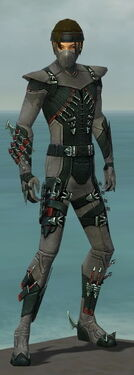 Assassin Seitung Armor M gray front