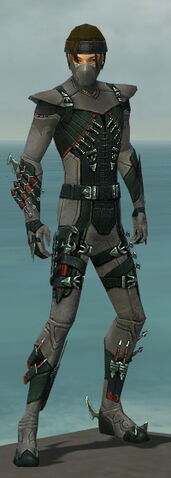 File:Assassin Seitung Armor M gray front.jpg