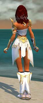 Hayda Armor Shining Blade Back