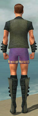Mesmer Rogue Armor M gray chest feet back