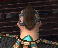 File:Monk Elite Luxon Armor M gray head back.jpg