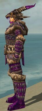 Warrior Charr Hide Armor M dyed side alternate