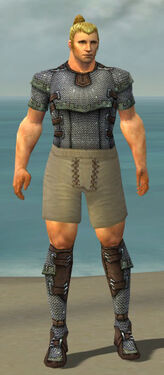Warrior Tyrian Armor M gray chest feet front